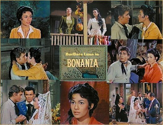 Bonanza Collage